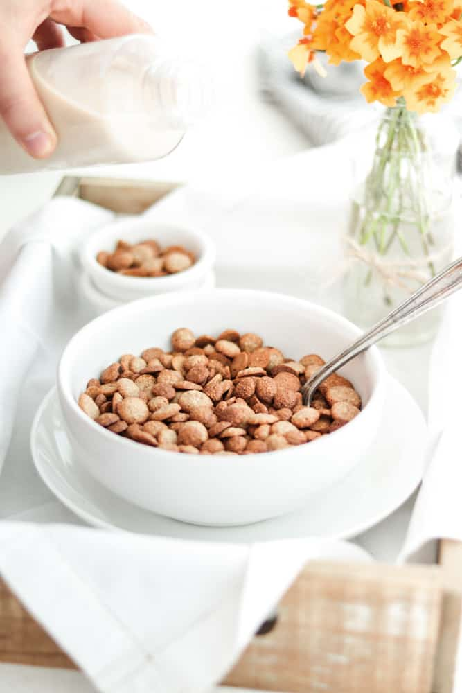 Cereal de Avena Casero